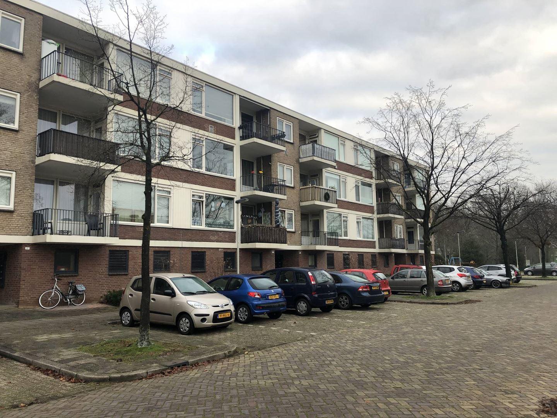 Kamer te huur in de Boksbergenstraat in Arnhem
